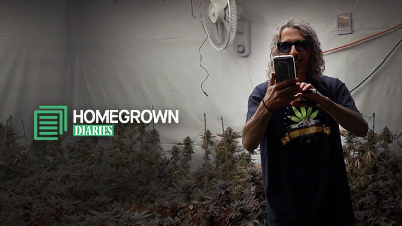 Kyle Kushman Presents Homegrown Diaries